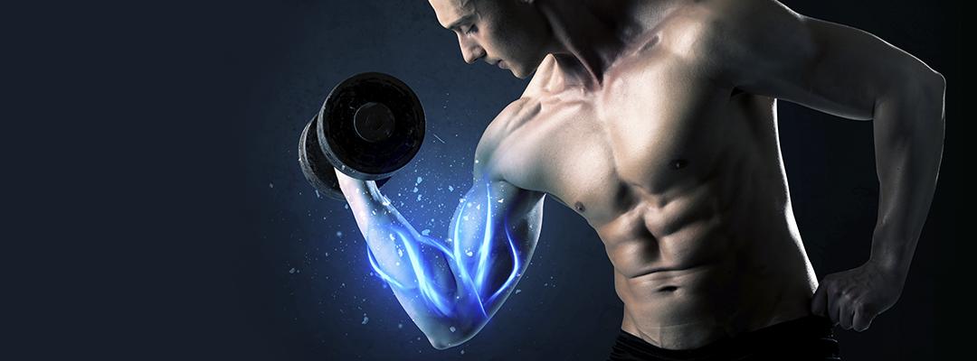 Protección Muscular, ¿Cómo podemos proteger nuestros músculos?